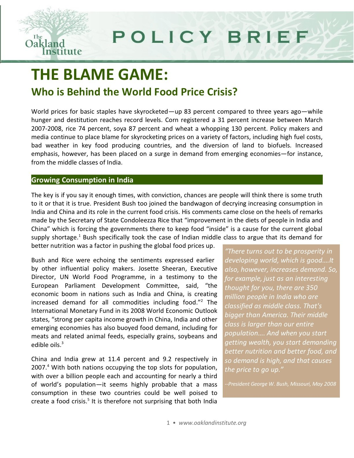 The Blame Game: Who is Behind the World Food Price Crisis