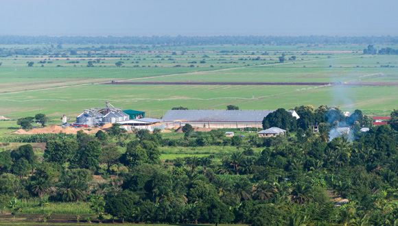 KPL plant and fields. @copy; Greenpeace