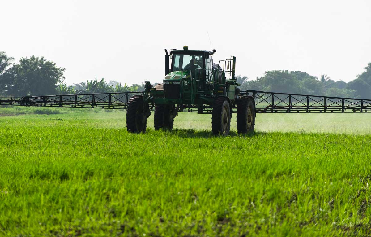 Crop spraying on the Agrica rice plantation. Credit: Greenpeace.