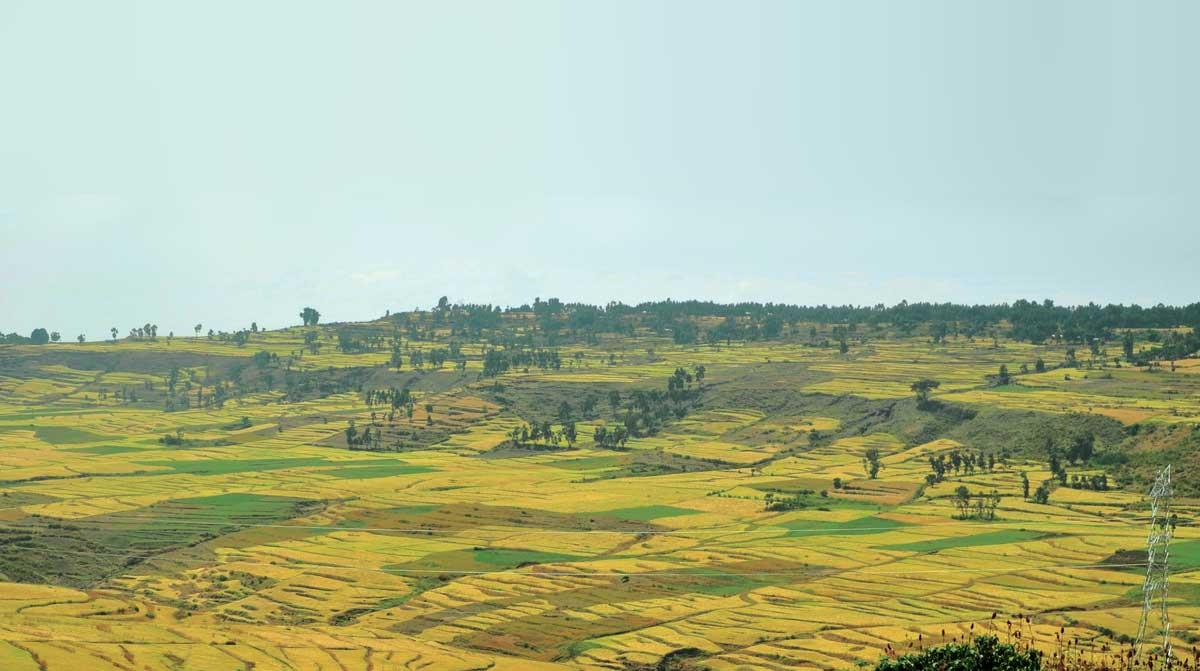Highland scene in Amhara, Ethiopia.