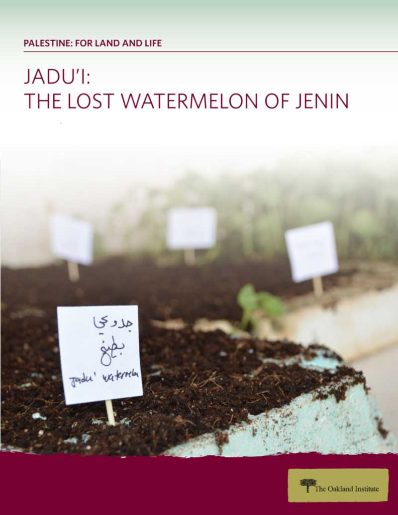 Jadu'I: The Lost Watermelon of Jenin, Cover