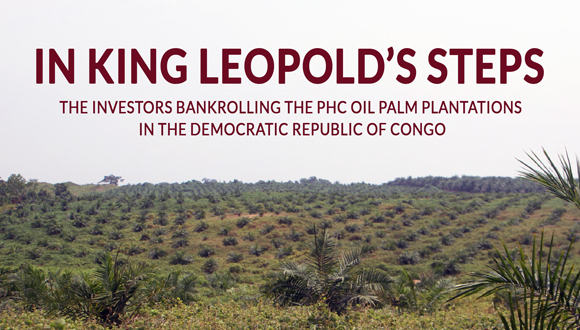 Recently planted oil palm plantation near Lokumete in February 2020