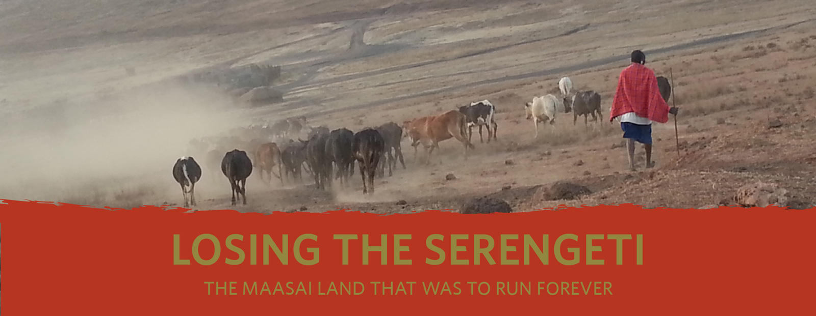 Losing the Serengeti: Report Cover Title