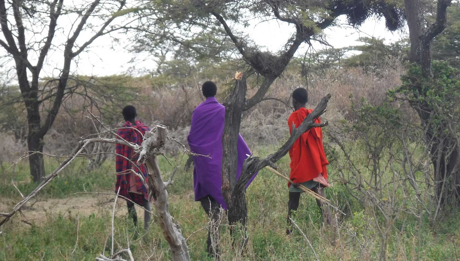 Young herders in Ngorongoro. Credit: The Oakland Institute