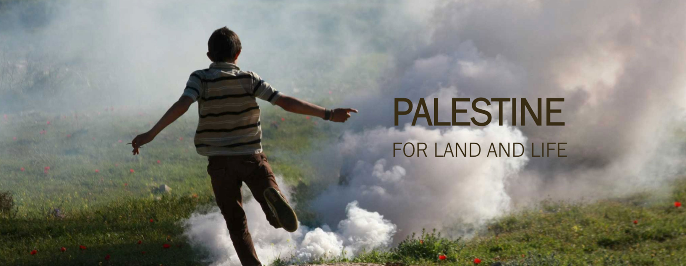 Palestine: For Land and Life