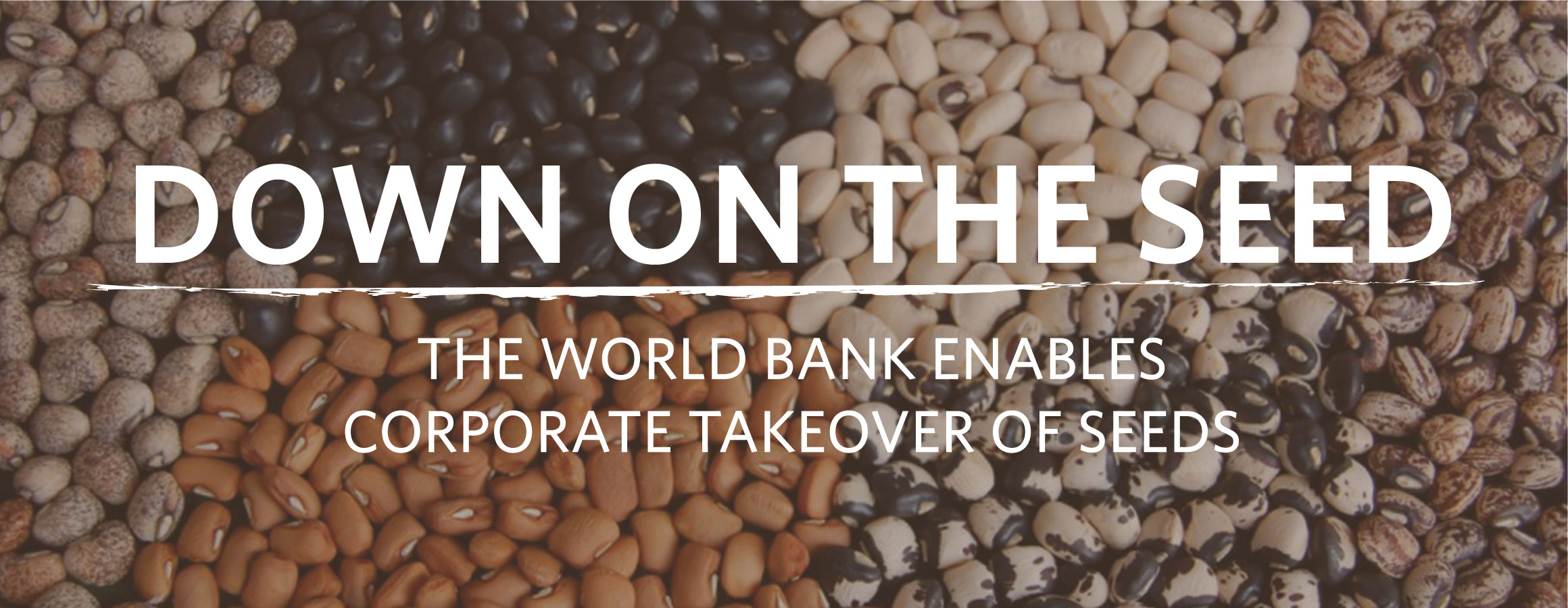 Down on the Seed: Enabling the Business of Agriculture Enables Corporate Takeover
