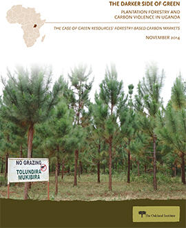 The Darker Side of Green: Plantation Forestry and Carbon Violence in Uganda
