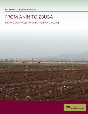 From Anin to Zbuba Report Cover