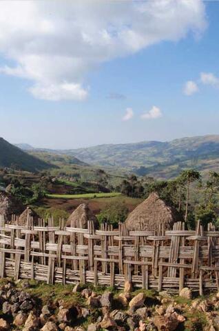 Protection de la Biodiversité et des Agro-Systèmes Traditionnels en Éthiopie
