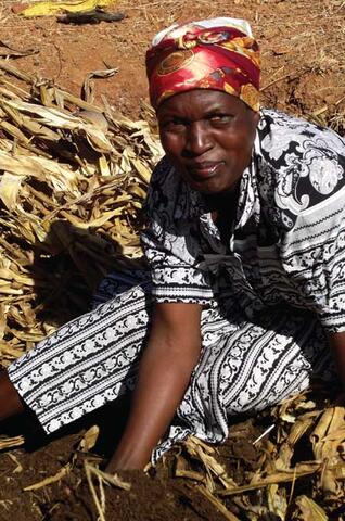 Mulch and Seed Banks: Conservation Farming in Zimbabwe