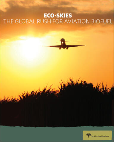 Eco-Skies report cover