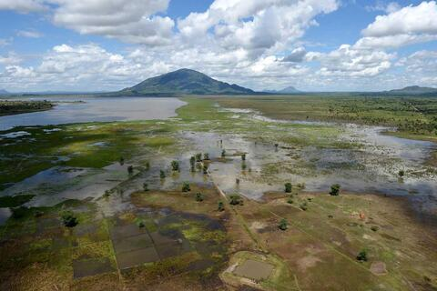 Flooded fields near the Shire and Linkhubula rivers in Malawi. The area is still recovering from the flooding after Cyclone Idai hit the country. Credit: GovernmentZA (CC BY-ND 2.0)