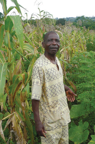 Agroforestry for Food Security