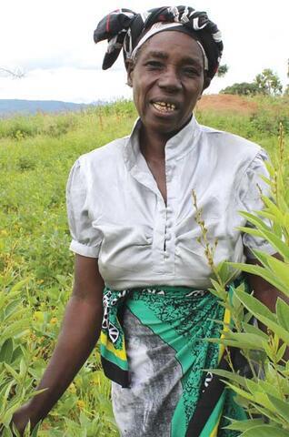 Legume Diversification to Improve Soil Fertility in Malawi