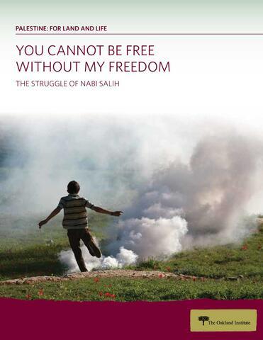The Struggle for Nabi Salih report cover