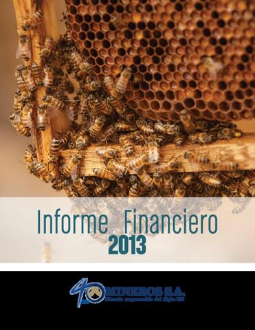 Mineros S.A. Financial Information, 2013