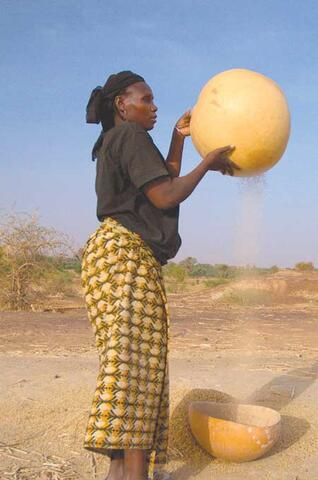 Restoring Ecological Balance and Bolstering Social and Economic Development in Niger