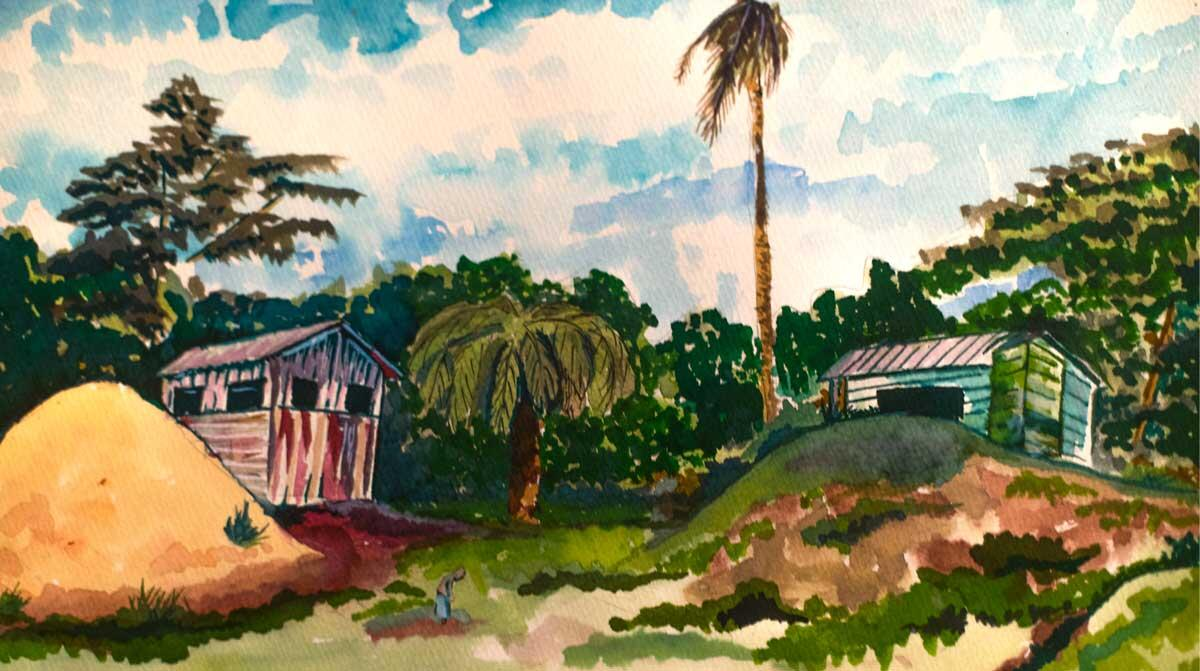 Life on the banks of Rio Coco. Illustration: Abner Hauge