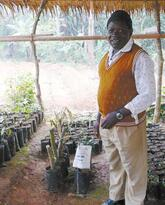 The Agricultural and Tree Products Program in Cameroon