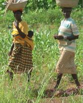 Women's Association for Compost and Other Agroecological Practices in Burkina Faso