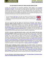 DFID factsheet cover