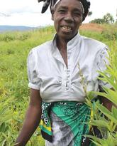 Legume Diversification to Improve Soil Fertility in Malawi