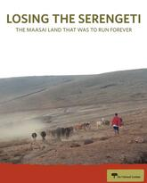 Losing the Serengeti report cover