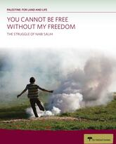 """The Struggle for Nabi Salih"" report cover"