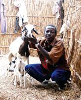 Regenerative Agriculture in Senegal