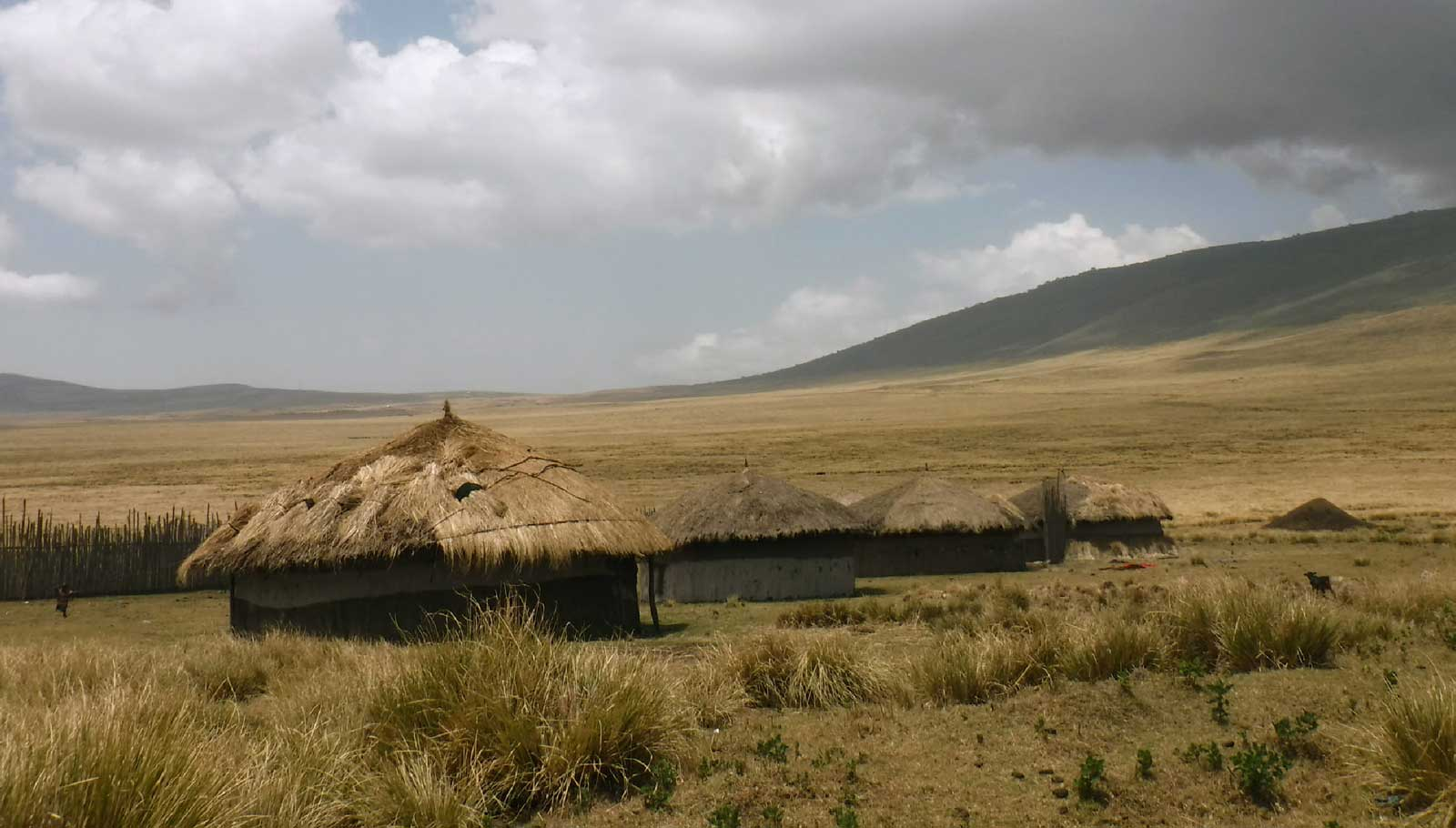 A boma in the Ngorongoro District.