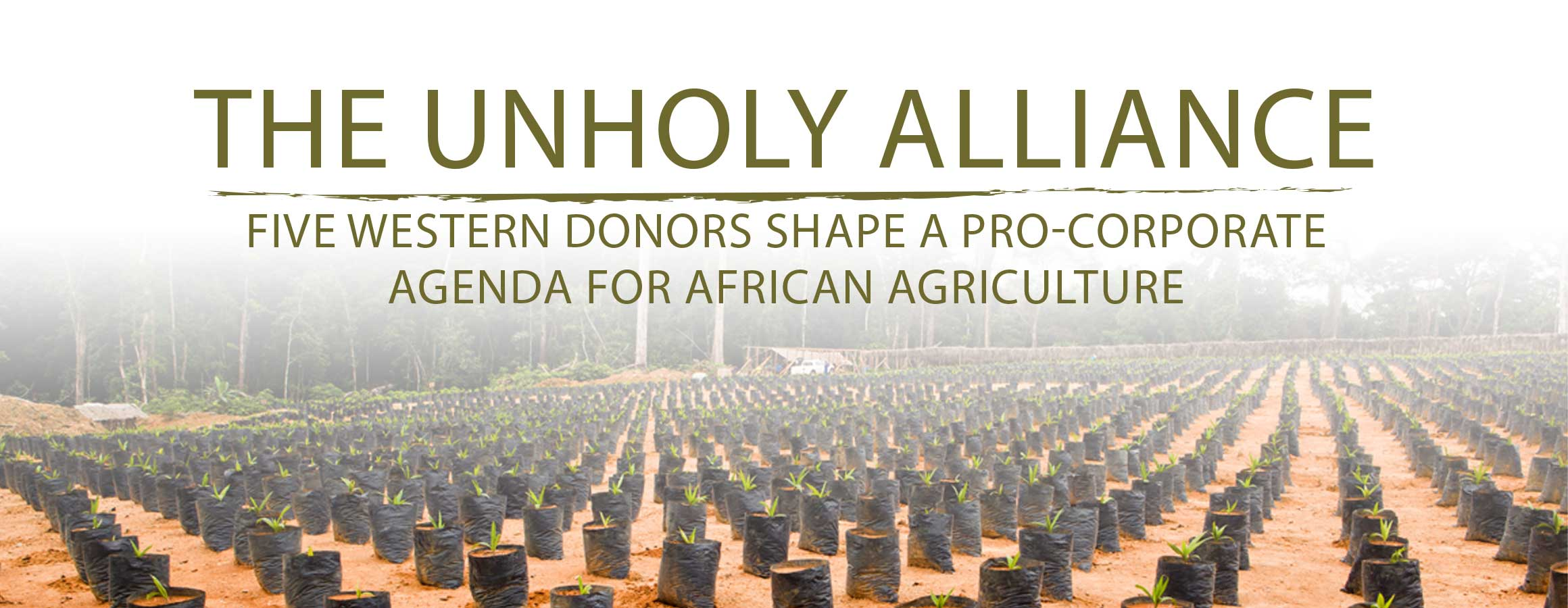The Unholy Alliance, Five Western Donors Shape a Pro-Corporate Agenda for African Agriculture