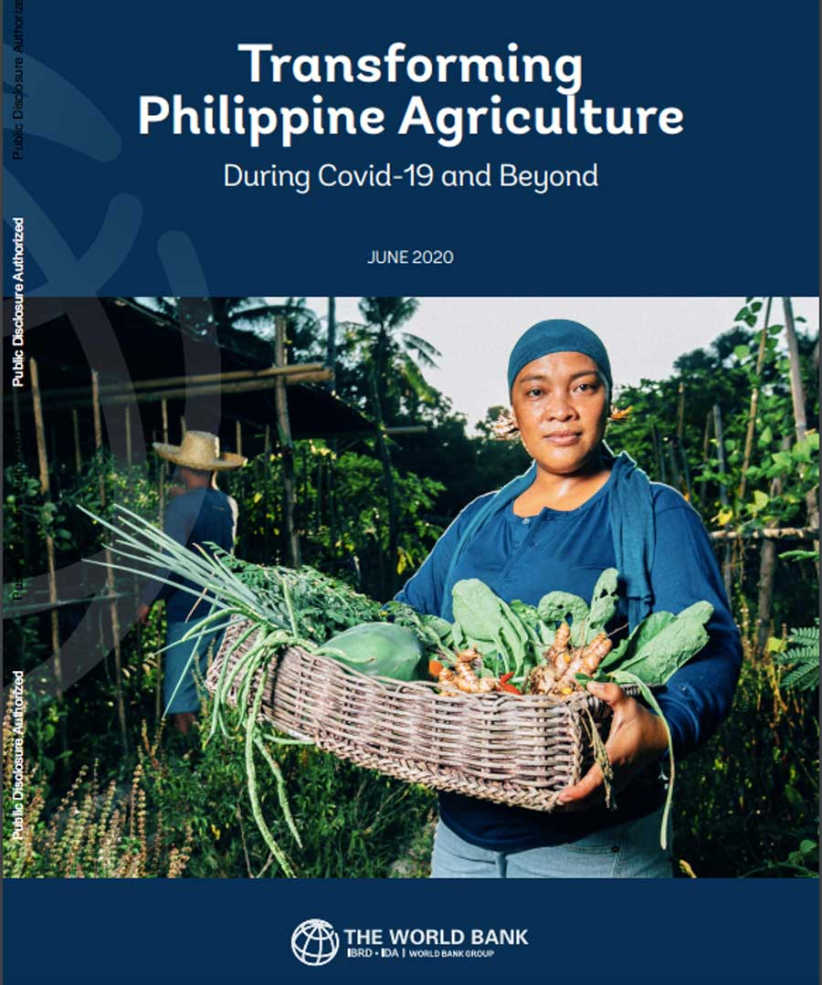 """Transforming Philippine Agriculture During COVID and Beyond,"" cover"